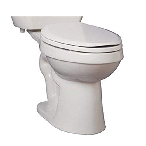 ProFlo Toilet review