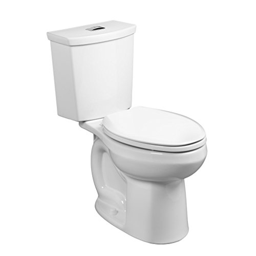 Right Height Dual Flush Toilets