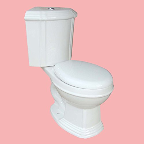 Space Saving Corner Toilet