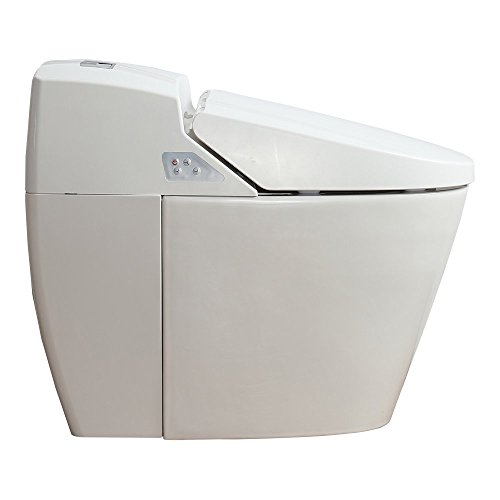 Ove Decors Godfrey Eco Toilet