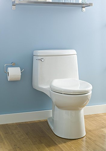 get rid of clogged toilet