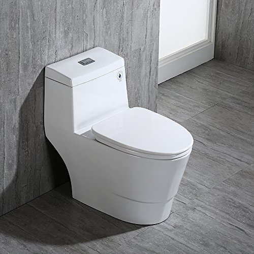 woodbridge dual flush toilet