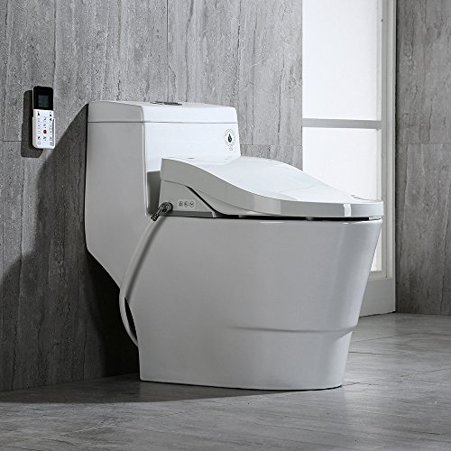 Luxury Bidet Toilet