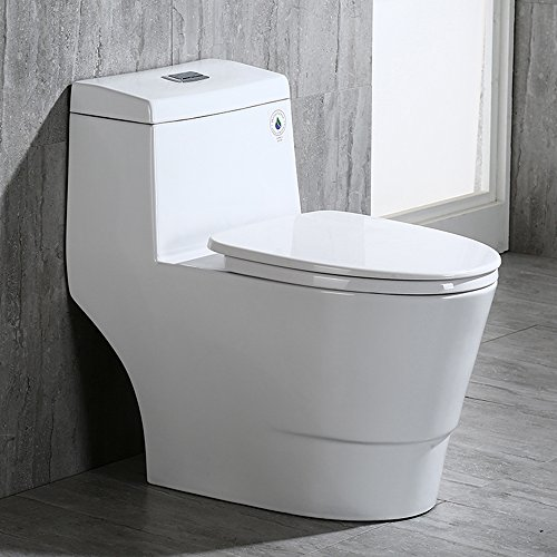 One-piece flushing Toilet