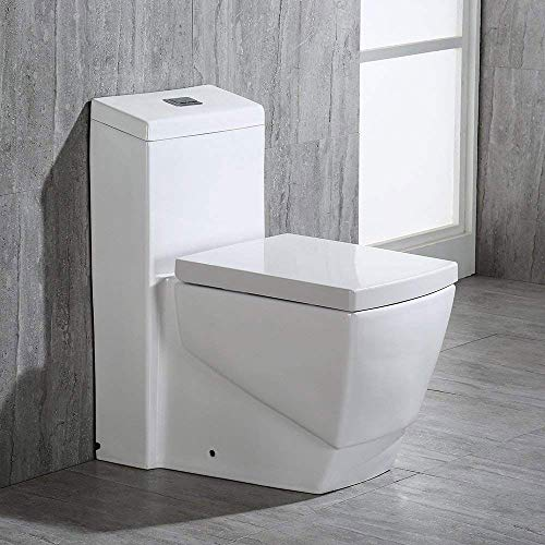 One-piece Elongated Dual Flush Toilets