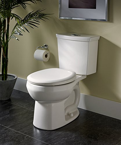 Dual Flush Elongated Toilet