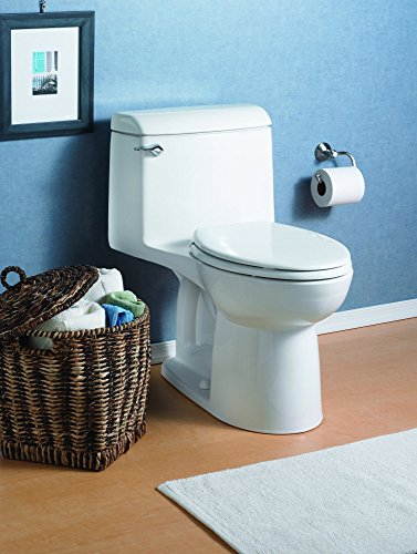 American standard or Kohler Which toilet is better? width=