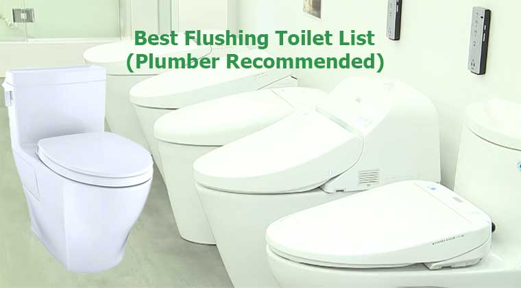 Best Flushing Toilet List