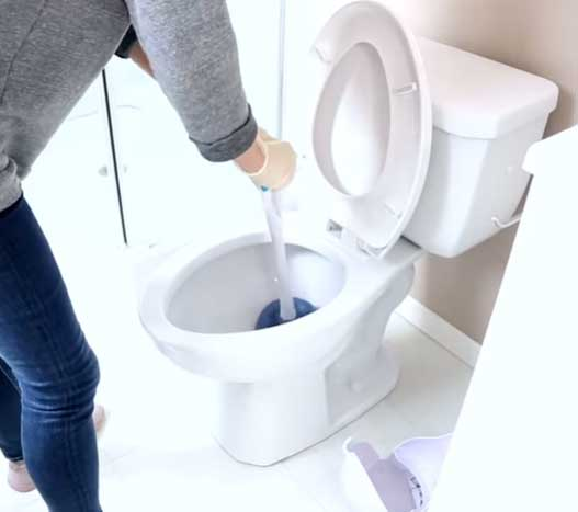 Clean the interior of the toilet