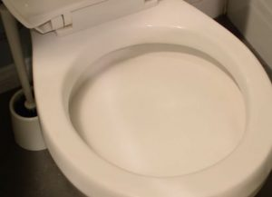 How to Unclog a Toilet with Baking Soda?