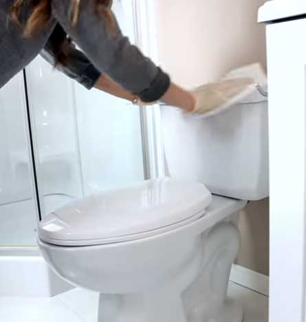 clean the toilet