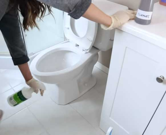 disinfectant to clean the area around the toilet